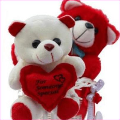 Lata Soft Toy Gift Set